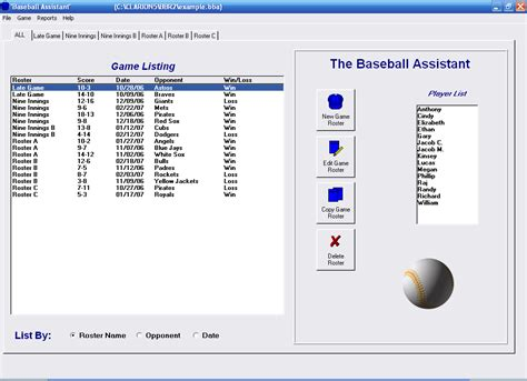 Sport Bad Organizer baseball roster organizer free and review
