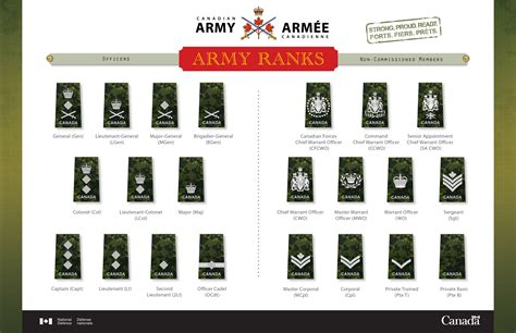 canadian military rank structure for the air force navy and army archived army news national canadian army article