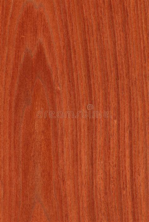 Mahogany (wood Texture) Stock Photography   Image: 8109022