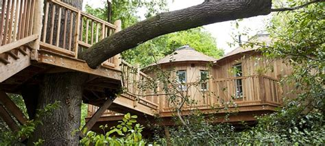 tree house insurance how to profit from the trend for quirky b bs and make money from your shed this is money