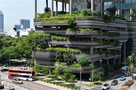 tree building novasia