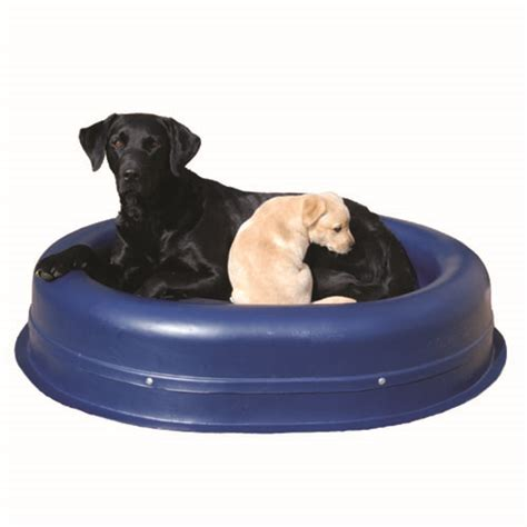 no chew dog bed small chew proof dog beds tuffies dog bedstuffies dog beds