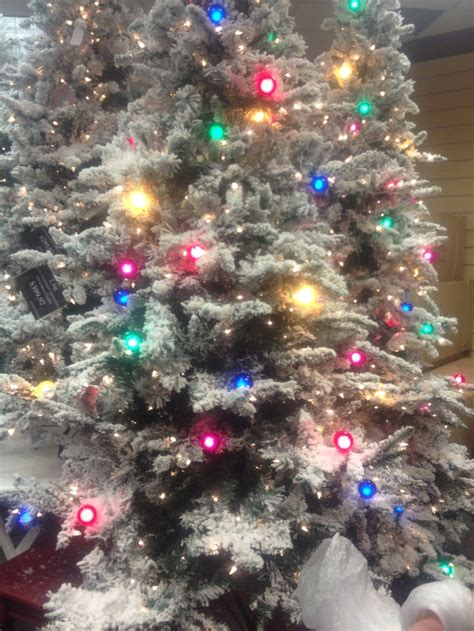 1000 images about christmas girly girl colors on