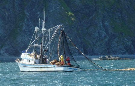 sport fishing boat captain jobs seasonal ketchikan employment information about the