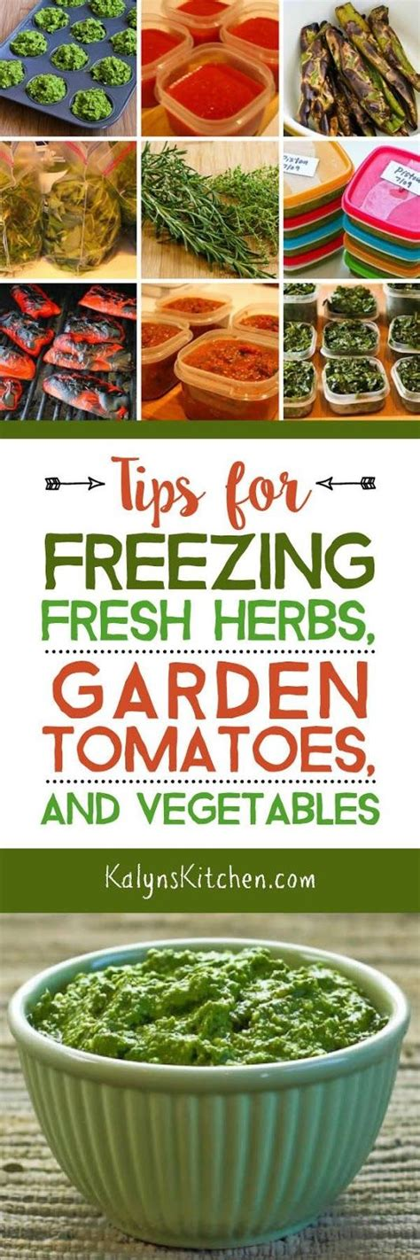Freezing Garden Vegetables Freezing Fresh Herbs Garden Tomatoes And Fresh Herbs On