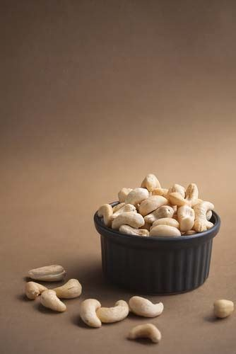 are cashews bad for dogs cashews and dogs can dogs eat cashews and how much