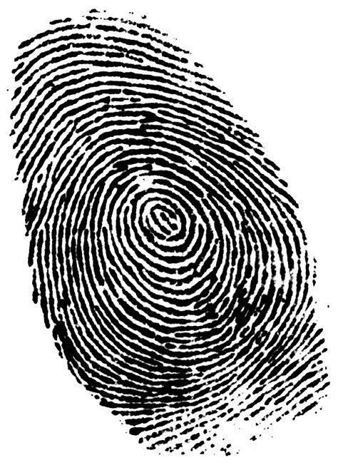 Finger Print Background Check New Fingerprinting Technology Keep Popular Id Form In Use