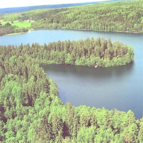 imagenes de los recursos naturales wikipedia agotamiento de recursos naturales erenovable com