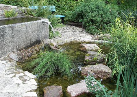 kleiner teich im garten wasser im steingarten
