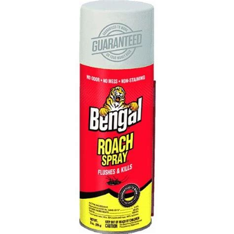 bengal bed bug spray belly up bugs shopswell