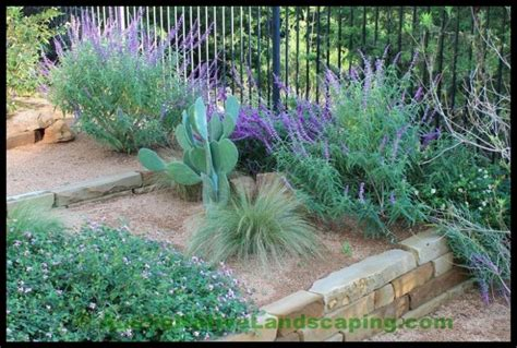 landscape design texas hill country 21 best xeriscape texas hill country images on pinterest