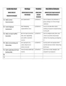 personal leadership plan template personal leadership plan