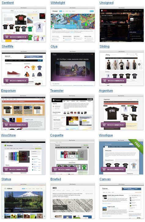 design by woo themes wordpress features explained wordpress themes