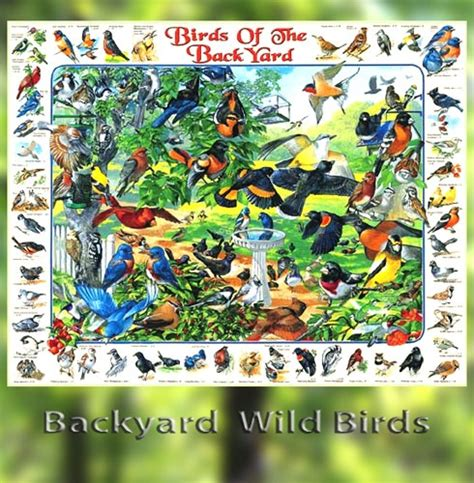 backyard birds jigsaw puzzle 2017 2018 best cars reviews