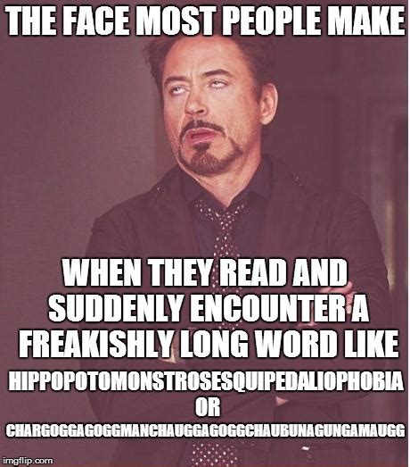 Meme Word - long words imgflip