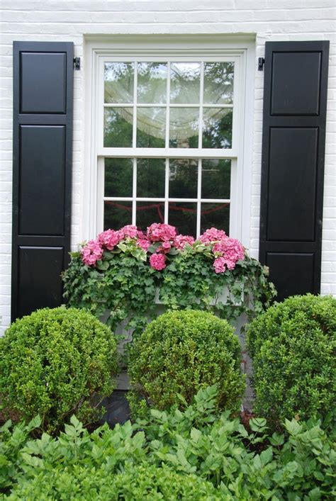 beautiful window beautiful window box plants pinterest