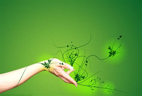 imagenes porotos verdes verde que te quiero verde taringa