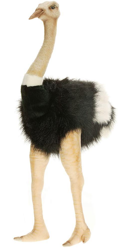 Home Decor Globe 31 quot male ostrich stuffed animal