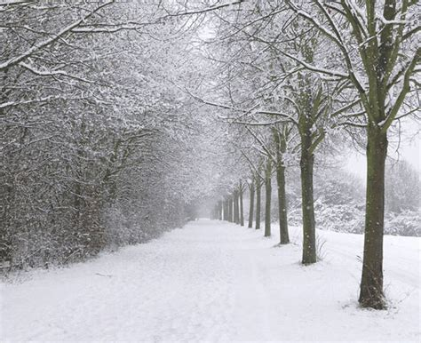 picture of snow weather wall of snow to smash uk as snowbomb hits in
