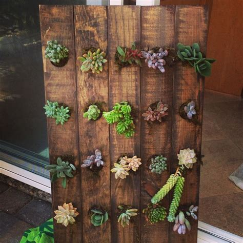 Vertical Garden Rack Vertical Succulent Garden Made From A Wooden Wine Rack