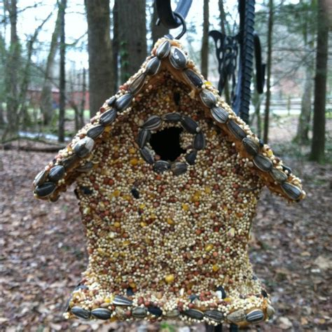 dad s christmas gift cheap wood birdhouse covered in