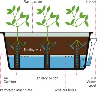 how do self watering planters work ok what about a self watering raised bed cinder block