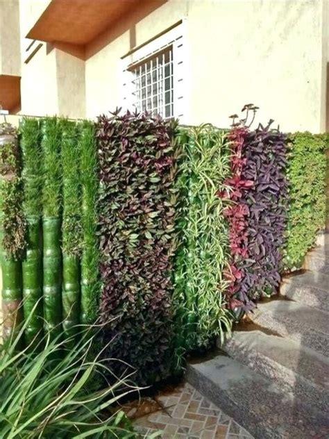 hydroponic gardening   beginners elegant plastic