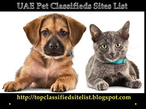 free puppy classified ads uae pet classifieds list 2017 top 20 uae pet free ads post