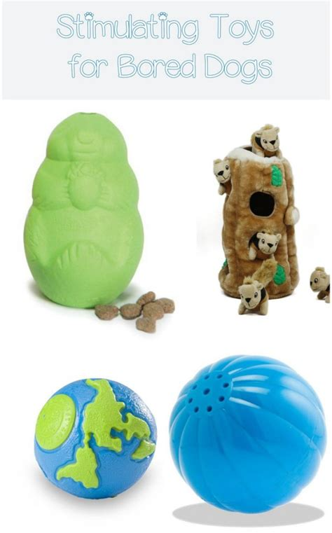 toys for bored dogs best simulating toys for bored dogs dogvills