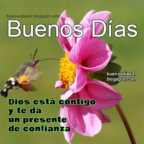 imagenes bonitas de buenos dias de dios buenos d 237 as para ti 06 21 15