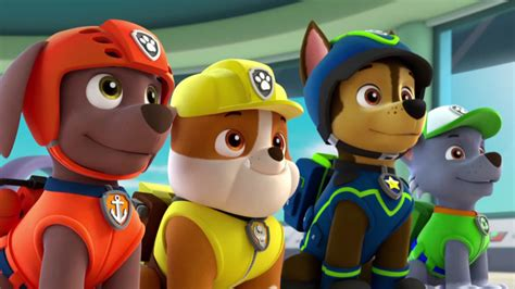 Kuas Rol Mini Ace All Paint image paw patrol s02e02 pups save the penguins pups