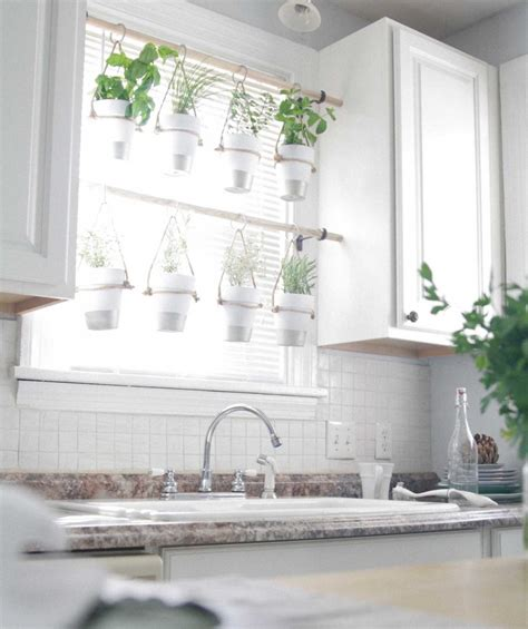 hanging window herb garden 20 marvelous indoor garden ideas combating lack of space