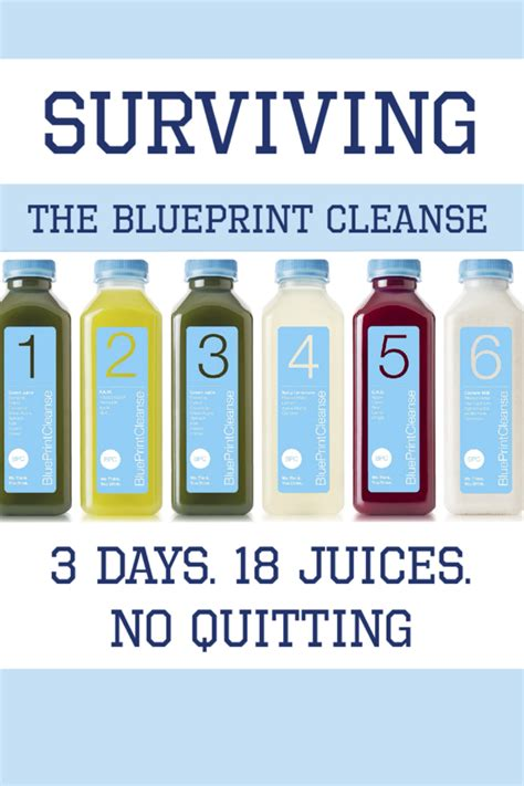 preparing for surviving the 90 days of the principalship books surviving the blueprint cleanse 3 days 18 juices no