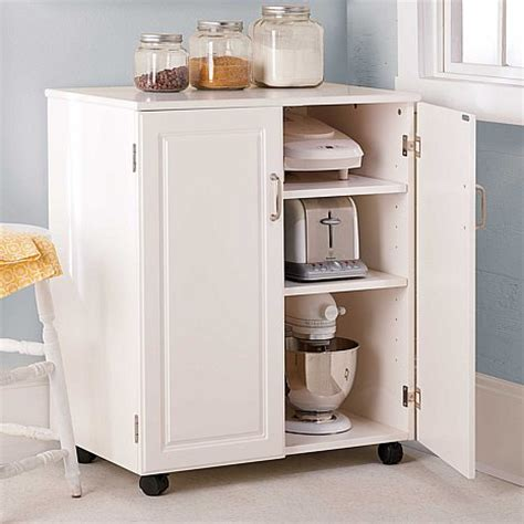 Small Kitchen Cabinet Storage Wonderful Storage Cabinets For Kitchens Ideas Storage Cabinets With Doors And Shelves Lowes