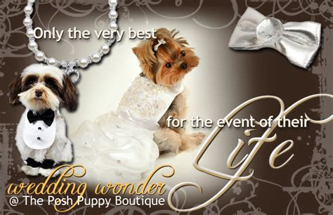 posh puppy boutique boutique designer clothes luxury beds accessories toys collars carriers