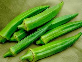 Summer Vegetable Garden - lee okra 4 g southern exposure seed exchange saving the past for the future