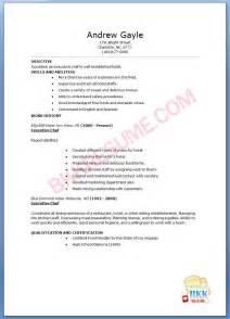 night society resume examples executive chef night society