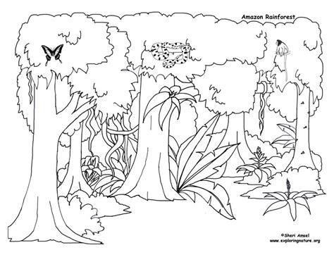 rain forest coloring page az coloring pages