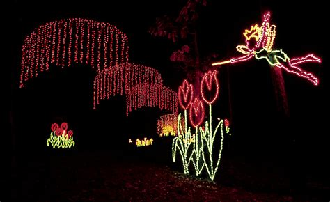 In Lights Callaway Gardens by Callaway Gardens In Lights Celebrates Its 20th Anniversary