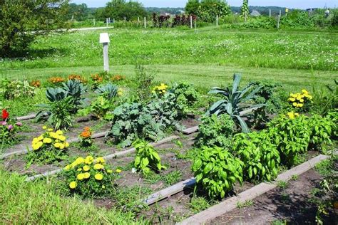 geneva community garden plots   rent kane