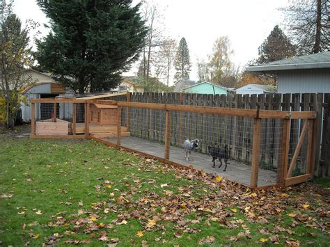 backyard dog kennel ideas dog run completed with dogs added flickr photo sharing