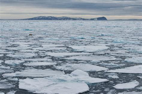 cara membuat artikel pemanasan global pengertian pemanasan global dari berbagai media