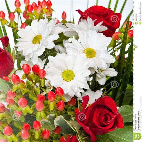 imagenes de flores rojas y blancas flores rojas y blancas brillantes y hermosas close para