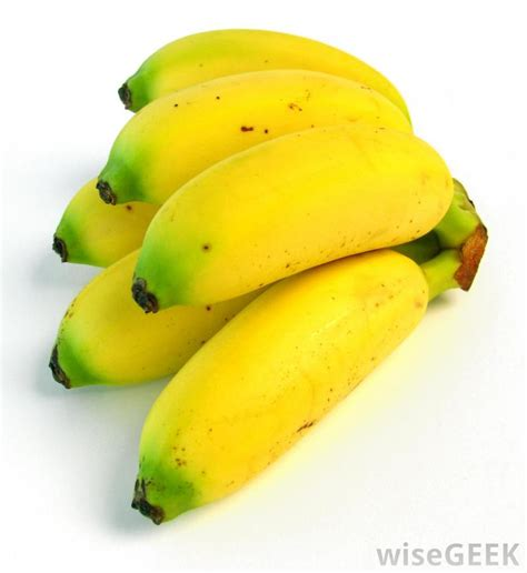 tiny banana name what are some different types of bananas with pictures