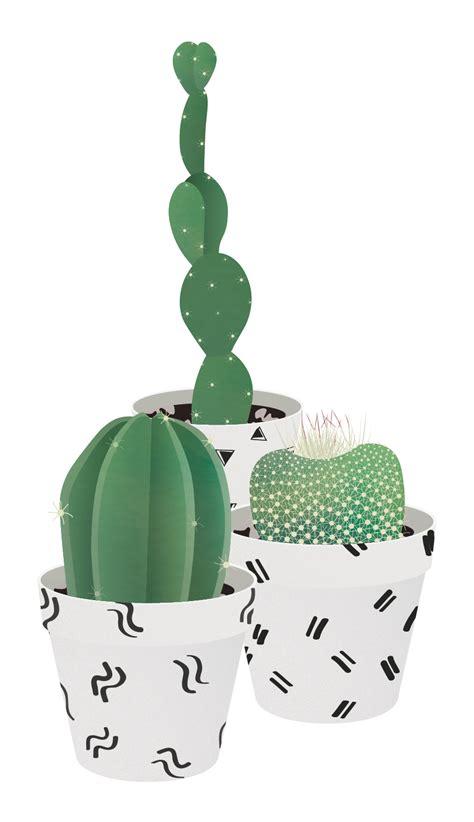 vector cactus succulent   httpswwwtoffuco