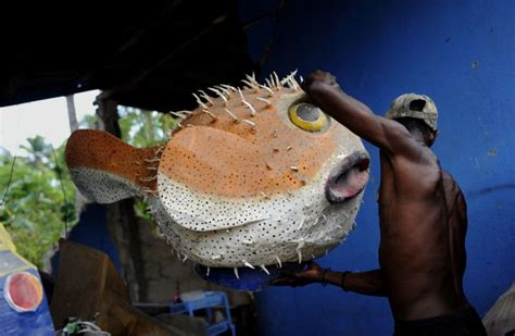 How To Make Paper Mache Fish - 20 best paper mache fish images on paper mache