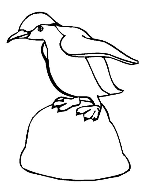 coloring pictures of baby penguins drawing coloring for child animal drawings baby penguin