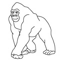 gorilla coloring pages gorilla coloring page