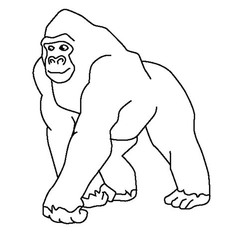 Gorilla Outline Coloring Page | gorilla coloring page