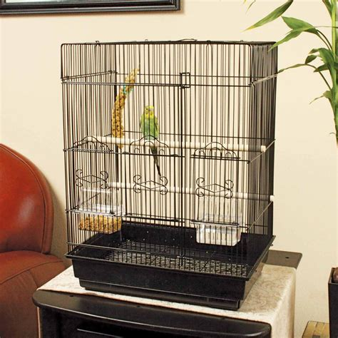 how to cage a you me square top parakeet cage petco